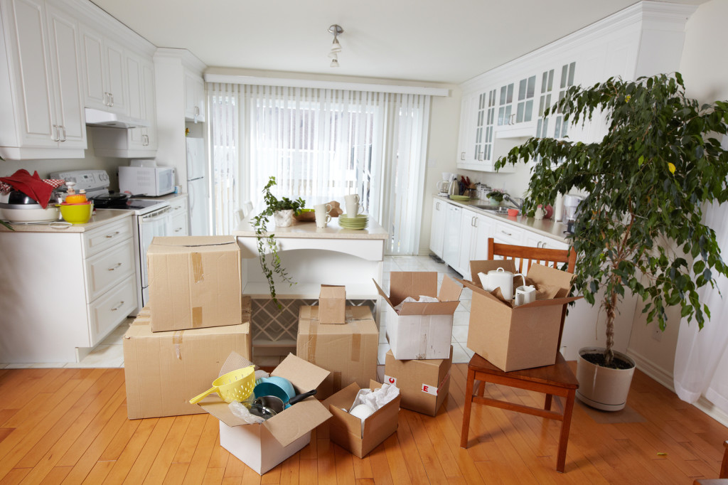 Move-In / Move-Out